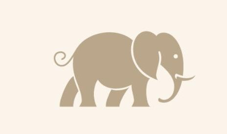 Facts about the elephant